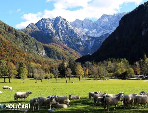 Slovenija roadtrip – S Valterom u deželu