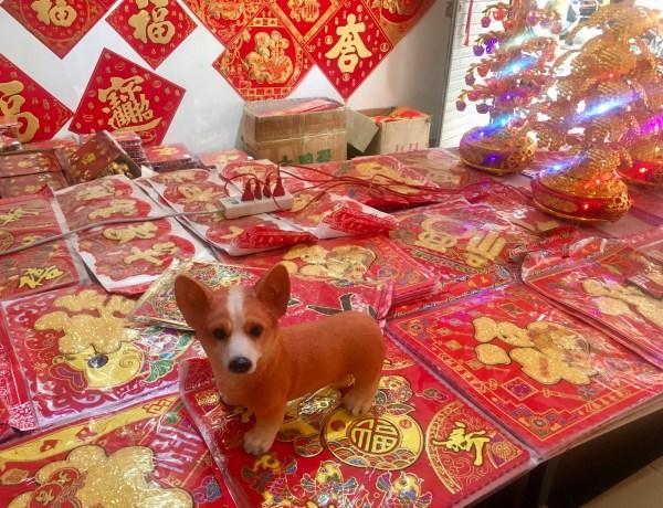 Kineska nova godina – godina psa