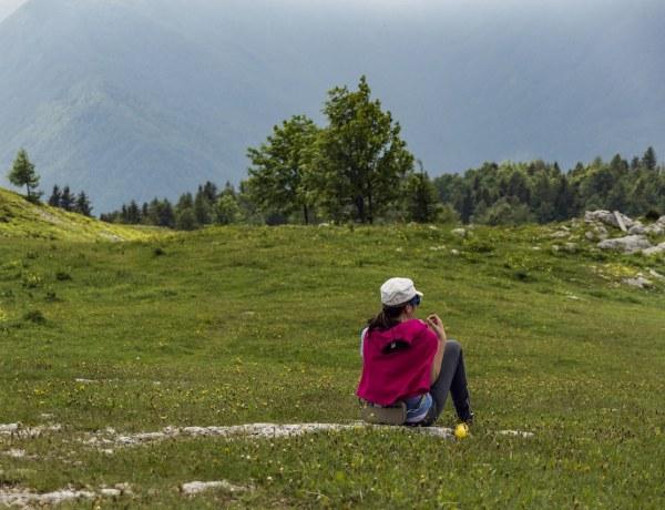 Velika planina i Logarska dolina by Dejan Preininger