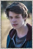 Colin Ford como Joe McAlister. Um adolescente esperto cujos pais estão do lado de fora da redoma.