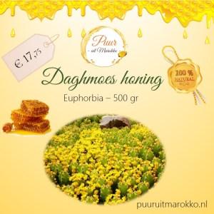 daghmous honing