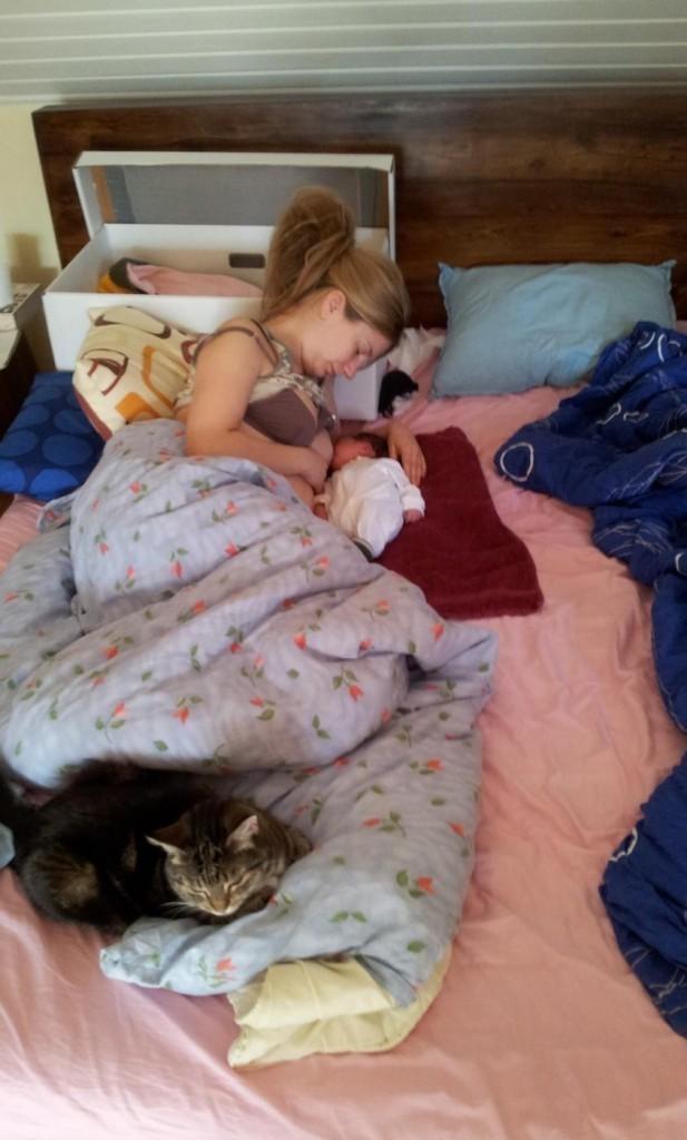 imetys kissa jaloissa