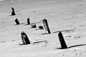 strand puuur fotografie