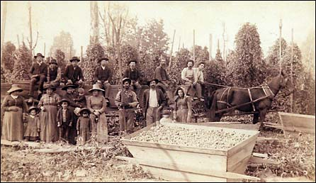 Puyallup Valley Hop Industry