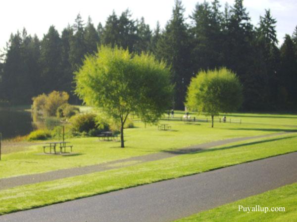 Bradley Lake Park Photo