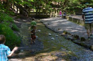 Woodland Park Puyallup
