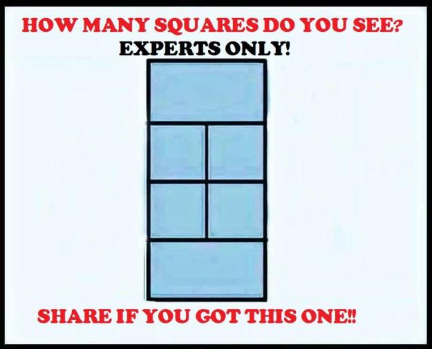 How Many Squares Puzzle