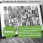 62 Experts Reveals Their Income Secrets! Avail It And Start Making Money Online
