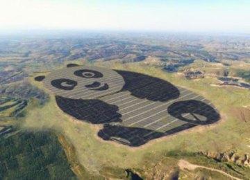 China's 50 megawatt giant panda-shaped solar power plant