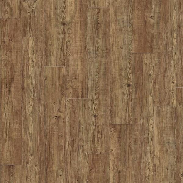 Moduleo Latin pine 24874