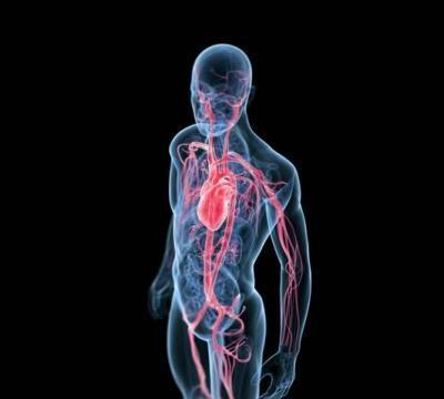 Sedam djelova ljudskog tijela koji su se nekada koristili kao lijek