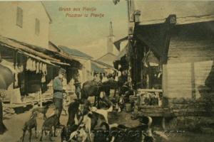 АУСТРОУГАРСКА ОКУПАТОРСКА УПРАВА У ПЉЕВЉИМА У ТОКУ ПРВОГ СВЈЕТСКОГ РАТА (1915-1918)