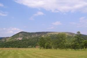Obavještenje za mještane MZ Brvenica
