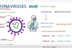 Informišite se: Šta je koronavirus, simptomi, širenje, prevencija…