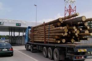 Struja i sirovine drže izvoz