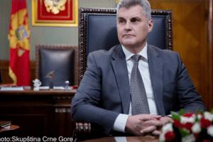 Parlamentarni izbori najkasnije do novembra: Brajović pozvao evropske posmatrače da ih nagledaju
