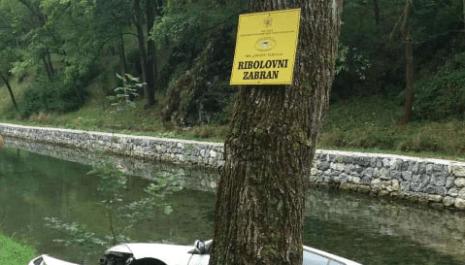 Nesvakidašnji događaj – Vozilo završilo u Breznici kod ribnjaka u Vodicama