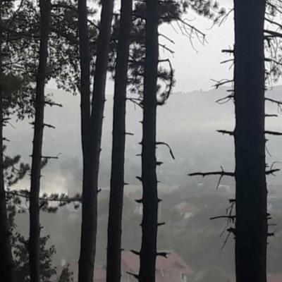 Pljevlja u dimu – Nastavlja se praksa neodgovornog paljenja  biljnog otpada na privatnim posjedima