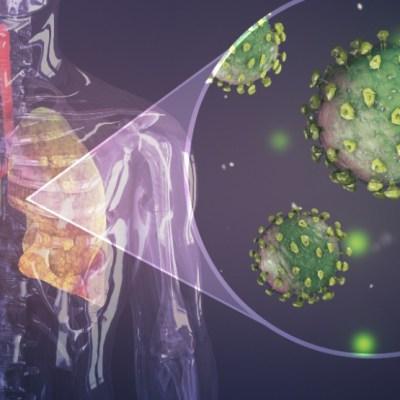 Novo istraživanje pokazuje dugoročno oštećenje pluća nakon koronavirusa