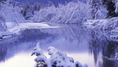 Jedna zimska priča – Studen
