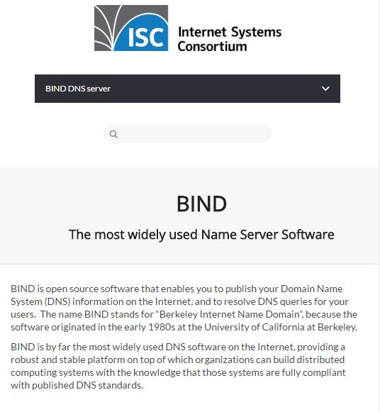 BIND DNS