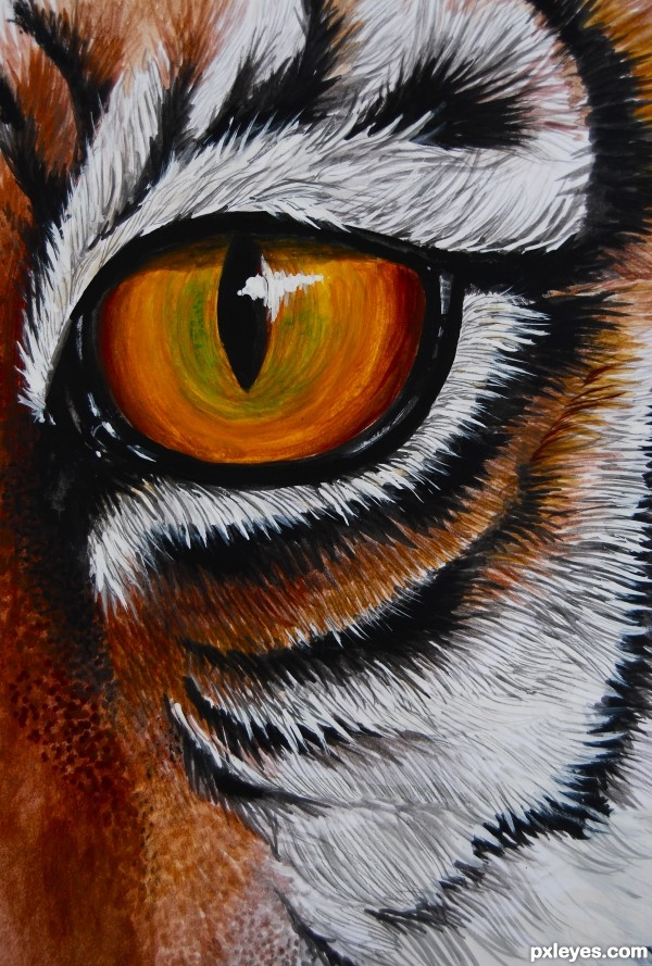 Drawing Guide The Making Of THe Eye Of The Tiger