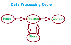 Data Processing Cycle