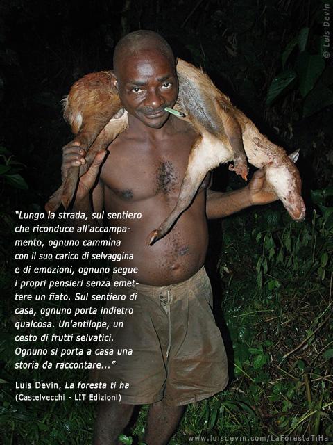 baka pygmies pygmy with