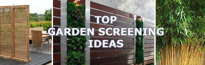 Top Screening Ideas For Your Garden