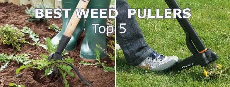 Weed puller reviews, top 5 models for removing weeds.