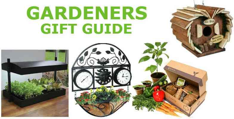 30+ Gardening gifts for gardeners that make the perfect present