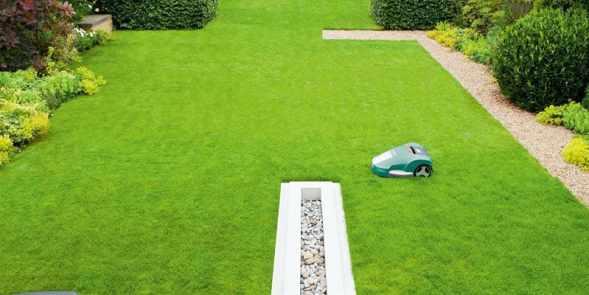Bosch Indego Robotic Lawn Mower on lawn
