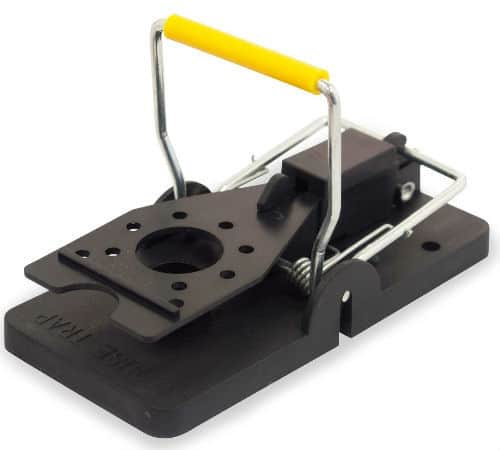 Aspectek Mouse Trap review
