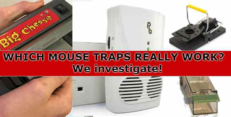 Best Mouse Trap Reviews – Mice trouble? – We compare snap traps, live catch & electric traps