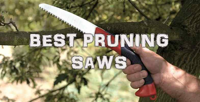 Best Pruning Saws – Top 10 Reviews & Comparisons