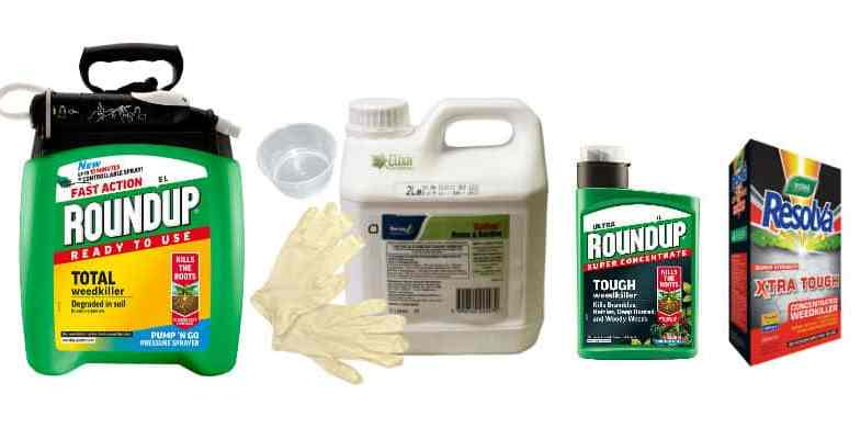 Top 6 Best Weed Killer for Driveways – Concentrate & Ready to Use
