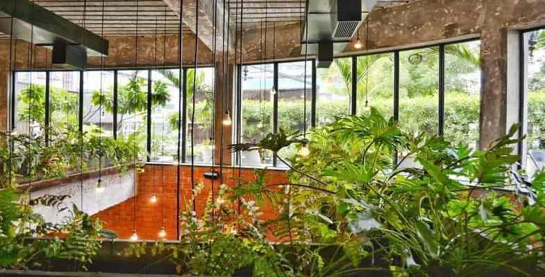How to Create a Sky-High Oasis: Creating a Balcony Garden