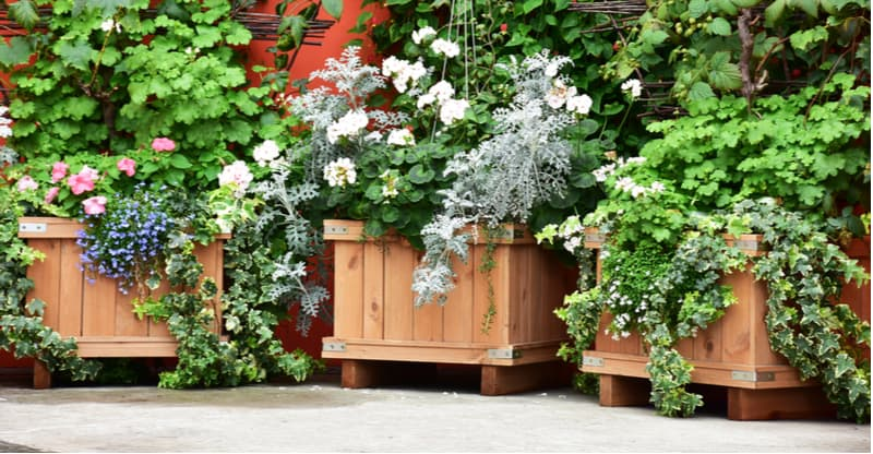 Best Wooden Planters Including Troughs, Barrels, Vertical Gardens, Wishing Wells and more