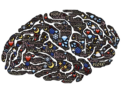 Hypnosis Habit Control Brain Image
