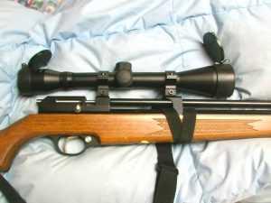 Diana Stormrider precharged pneumatic air rifle Part 4  Air gun blog  Pyramyd Air Report