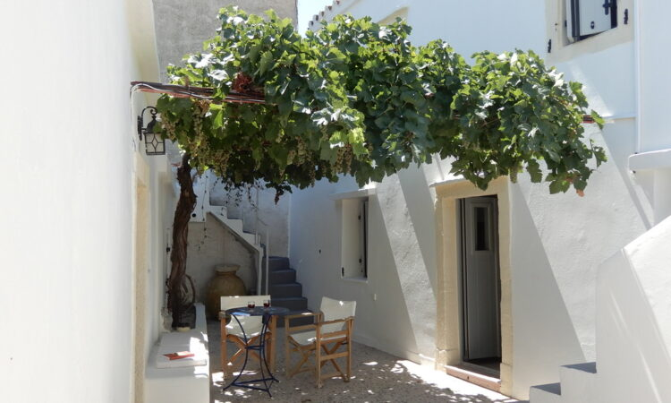 Vine Leaf House Potamos Pyrgos House