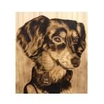 Wood-burned-pet-portraits