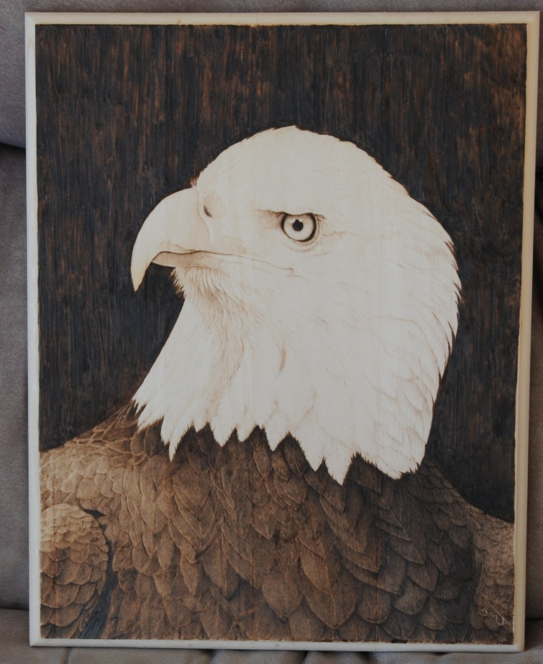 bald eagle pyrography by brenda