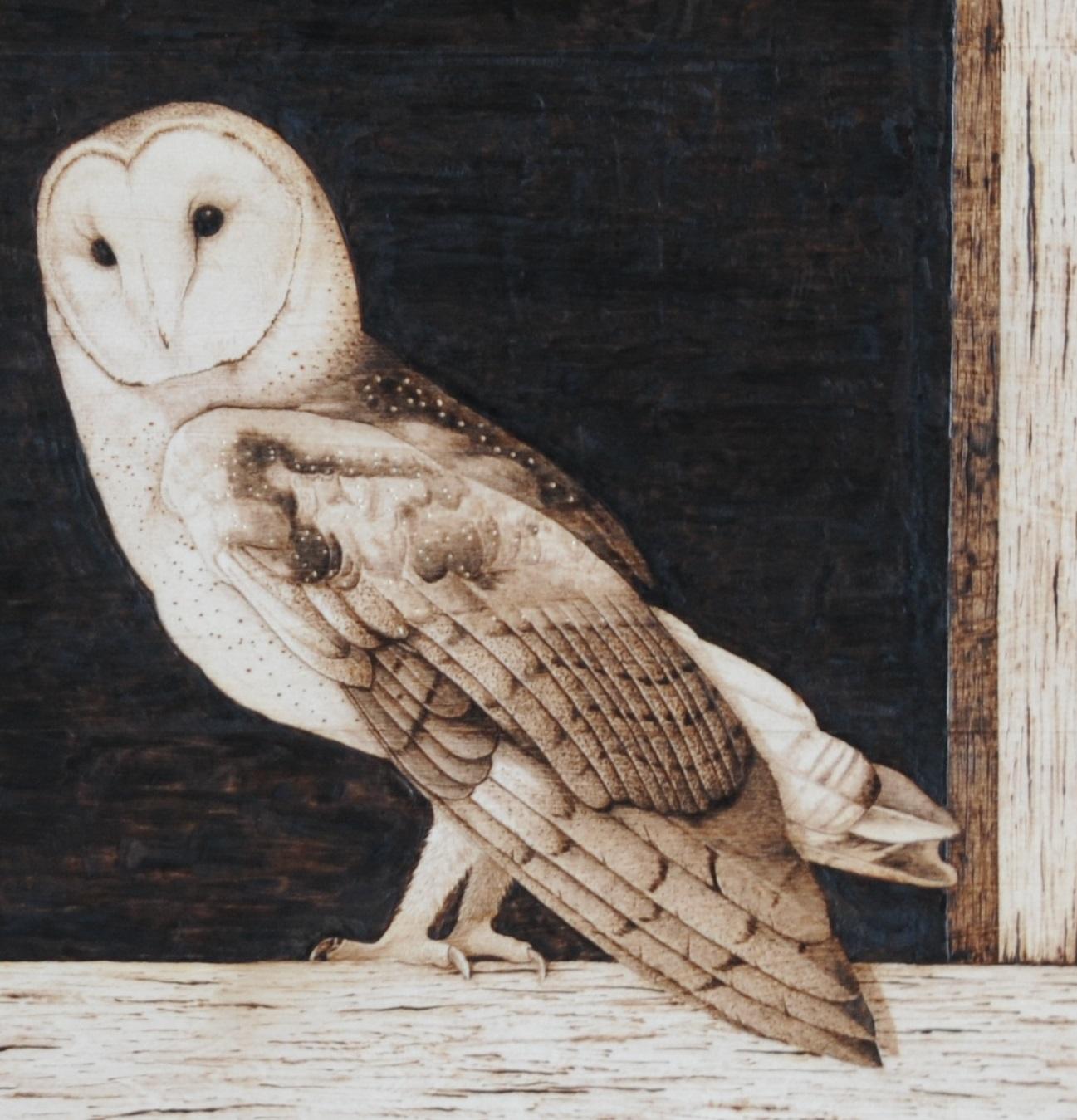 The Barn Owl Pyrography Wood Burning