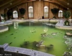 Tyson pool
