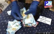Seguridad Pública desarticula narco familia integrada por madre y dos de sus hijos