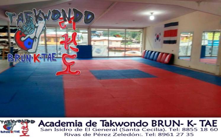 Taekwondo, www.pzactual.com