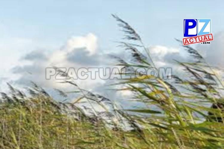 Viento fuerte por afectación de sistema de alta presión, 08 de febrero de 2019.