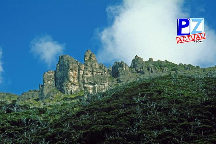 Emisión postal presenta dos especies únicas descubiertas en el Parque Nacional Chirripó.