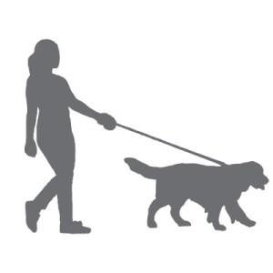 Hundehalter in die Planung einbeziehen